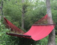 Double Hammock 2